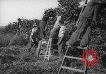 Image of Palestinian civilians Rehovot Palestine, 1938, second 26 stock footage video 65675062960