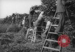 Image of Palestinian civilians Rehovot Palestine, 1938, second 29 stock footage video 65675062960