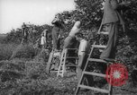 Image of Palestinian civilians Rehovot Palestine, 1938, second 30 stock footage video 65675062960
