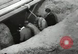 Image of excavation work Africa, 1955, second 34 stock footage video 65675062963