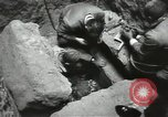 Image of excavation work Africa, 1955, second 50 stock footage video 65675062963