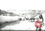 Image of Small boy walking with camels Amman Transjordan, 1945, second 2 stock footage video 65675062976