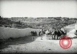 Image of Small boy walking with camels Amman Transjordan, 1945, second 4 stock footage video 65675062976