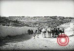 Image of Small boy walking with camels Amman Transjordan, 1945, second 5 stock footage video 65675062976