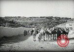Image of Small boy walking with camels Amman Transjordan, 1945, second 9 stock footage video 65675062976