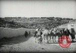 Image of Small boy walking with camels Amman Transjordan, 1945, second 11 stock footage video 65675062976