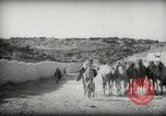Image of Small boy walking with camels Amman Transjordan, 1945, second 12 stock footage video 65675062976