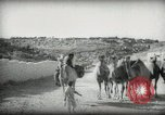 Image of Small boy walking with camels Amman Transjordan, 1945, second 16 stock footage video 65675062976