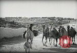 Image of Small boy walking with camels Amman Transjordan, 1945, second 17 stock footage video 65675062976
