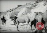 Image of Small boy walking with camels Amman Transjordan, 1945, second 22 stock footage video 65675062976