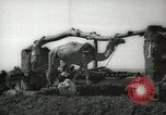 Image of water wheel Egypt, 1938, second 3 stock footage video 65675062979