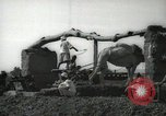 Image of water wheel Egypt, 1938, second 6 stock footage video 65675062979