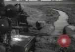 Image of water wheel Egypt, 1938, second 23 stock footage video 65675062979