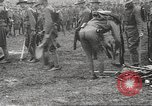 Image of World War I American soldiers building barracks United States USA, 1917, second 30 stock footage video 65675063006
