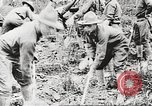 Image of World War I American soldiers building barracks United States USA, 1917, second 59 stock footage video 65675063006