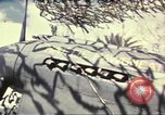Image of Names on various P-47 aircraft World War 2 United States USA, 1942, second 57 stock footage video 65675063029