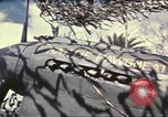 Image of Names on various P-47 aircraft World War 2 United States USA, 1942, second 58 stock footage video 65675063029
