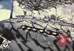 Image of Names on various P-47 aircraft World War 2 United States USA, 1942, second 61 stock footage video 65675063029