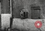 Image of American soldier mail call World War 1 France, 1917, second 3 stock footage video 65675063071