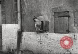 Image of American soldier mail call World War 1 France, 1917, second 4 stock footage video 65675063071