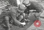 Image of US soldiers examine gunfire damaged car France, 1917, second 12 stock footage video 65675063072
