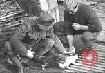 Image of US soldiers examine gunfire damaged car France, 1917, second 13 stock footage video 65675063072