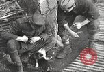 Image of US soldiers examine gunfire damaged car France, 1917, second 17 stock footage video 65675063072