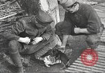 Image of US soldiers examine gunfire damaged car France, 1917, second 18 stock footage video 65675063072