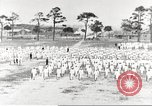 Image of US Navy sailor training for World War 1 United States USA, 1917, second 20 stock footage video 65675063086