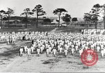 Image of US Navy sailor training for World War 1 United States USA, 1917, second 21 stock footage video 65675063086