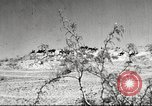 Image of 1st Cavalry Division Fort Bliss Texas USA, 1942, second 1 stock footage video 65675063100