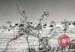 Image of 1st Cavalry Division Fort Bliss Texas USA, 1942, second 3 stock footage video 65675063100