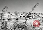 Image of 1st Cavalry Division Fort Bliss Texas USA, 1942, second 8 stock footage video 65675063100