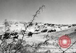 Image of 1st Cavalry Division Fort Bliss Texas USA, 1942, second 10 stock footage video 65675063100