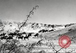 Image of 1st Cavalry Division Fort Bliss Texas USA, 1942, second 11 stock footage video 65675063100