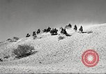 Image of 1st Cavalry Division Fort Bliss Texas USA, 1942, second 22 stock footage video 65675063100