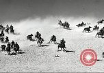 Image of 1st Cavalry Division Fort Bliss Texas USA, 1942, second 34 stock footage video 65675063100