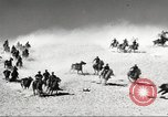 Image of 1st Cavalry Division Fort Bliss Texas USA, 1942, second 35 stock footage video 65675063100