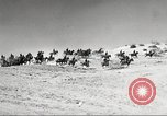 Image of 1st Cavalry Division Fort Bliss Texas USA, 1942, second 46 stock footage video 65675063100