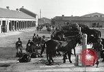 Image of 1st Cavalry Division Fort Bliss Texas USA, 1942, second 12 stock footage video 65675063104
