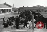 Image of 1st Cavalry Division Fort Bliss Texas USA, 1942, second 13 stock footage video 65675063104