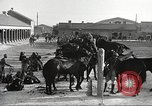 Image of 1st Cavalry Division Fort Bliss Texas USA, 1942, second 14 stock footage video 65675063104