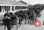 Image of 1st Cavalry Division Fort Bliss Texas USA, 1942, second 20 stock footage video 65675063104