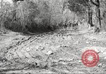 Image of 1st Cavalry Division Fort Oglethorpe Georgia USA, 1942, second 3 stock footage video 65675063108