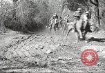Image of 1st Cavalry Division Fort Oglethorpe Georgia USA, 1942, second 7 stock footage video 65675063108