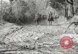 Image of 1st Cavalry Division Fort Oglethorpe Georgia USA, 1942, second 10 stock footage video 65675063108