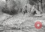 Image of 1st Cavalry Division Fort Oglethorpe Georgia USA, 1942, second 11 stock footage video 65675063108