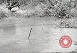 Image of 1st Cavalry Division Fort Oglethorpe Georgia USA, 1942, second 30 stock footage video 65675063108