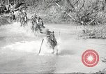 Image of 1st Cavalry Division Fort Oglethorpe Georgia USA, 1942, second 34 stock footage video 65675063108