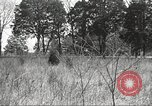 Image of 1st Cavalry Division Fort Oglethorpe Georgia USA, 1942, second 32 stock footage video 65675063109